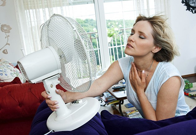 Woman In Front Of Fan