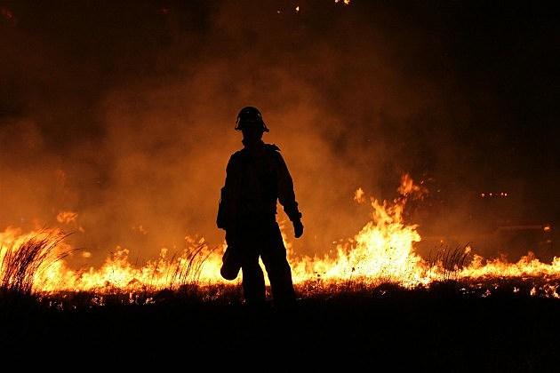 Backlit  Firefighter